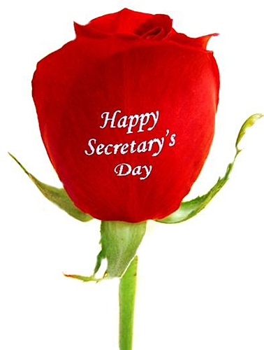 Открытка happy secretary's day!