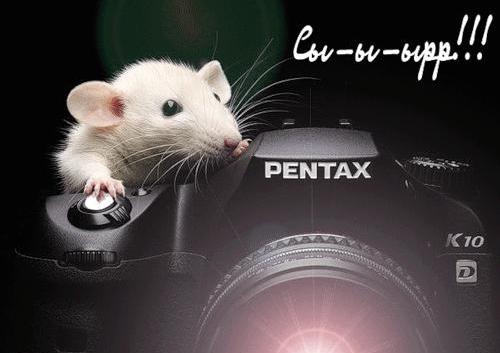Открытка день фотографа!