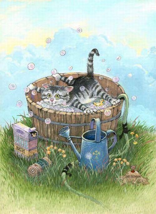 Открытка про кота