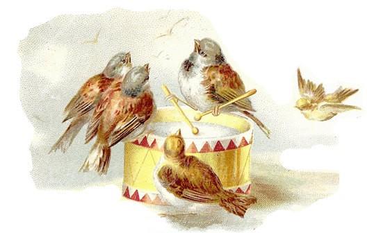 Открытка птичий концерт