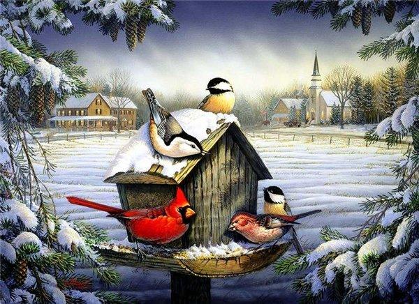 Открытка птицы зимой