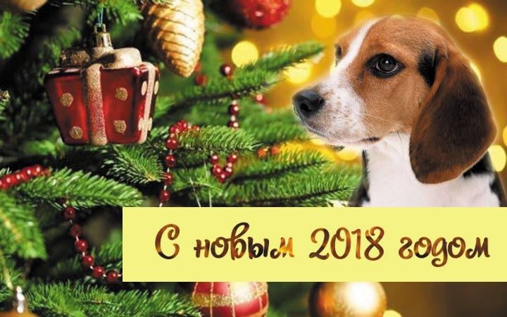 Открытка символ года Собака