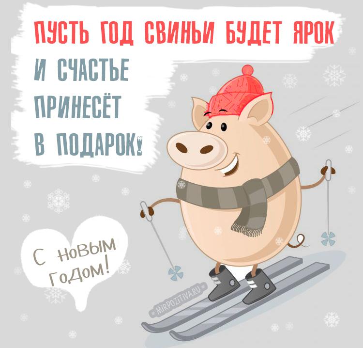 Пусть Год Свиньи будет ярким!