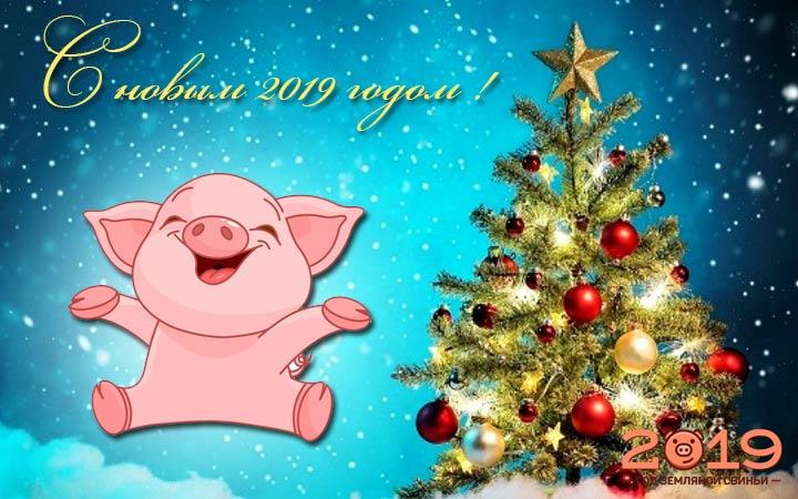 Открытка с Годом земляной Свиньи!