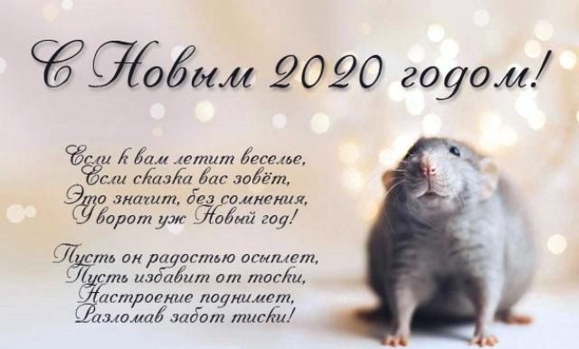 С Новым 2020 Годом Крысы стихи