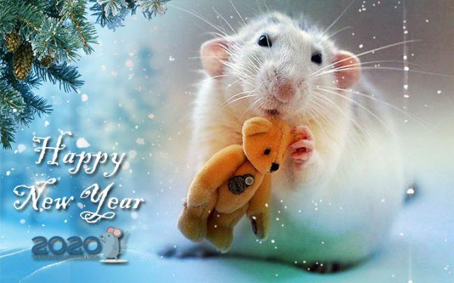 С Новым 2020 Годом Белой Крысы!