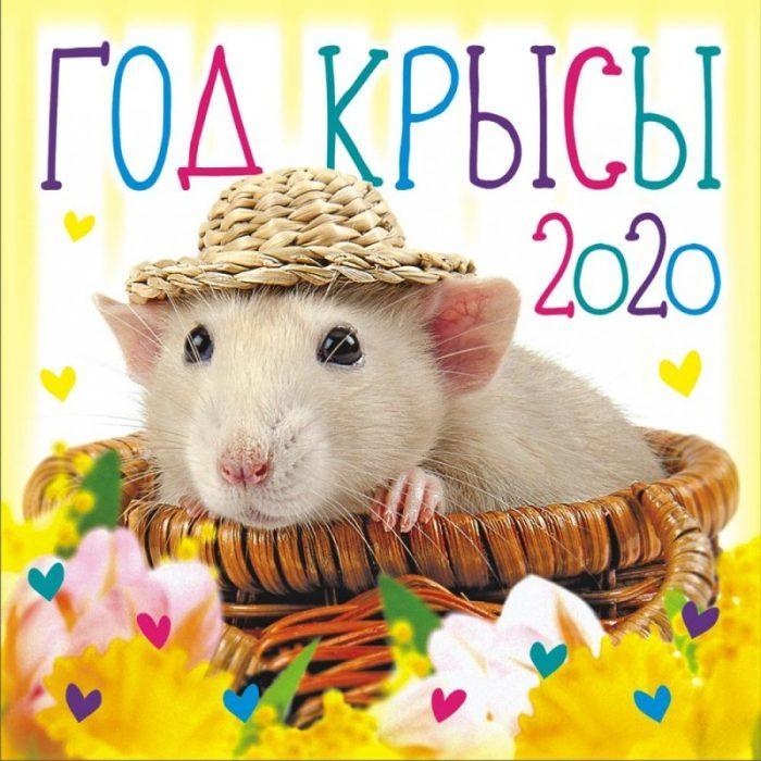 Открытка Год Крысы 2020
