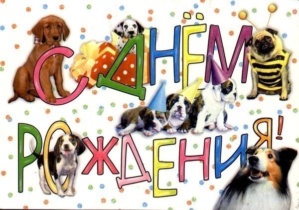 Открытка с днем рождения с собаками