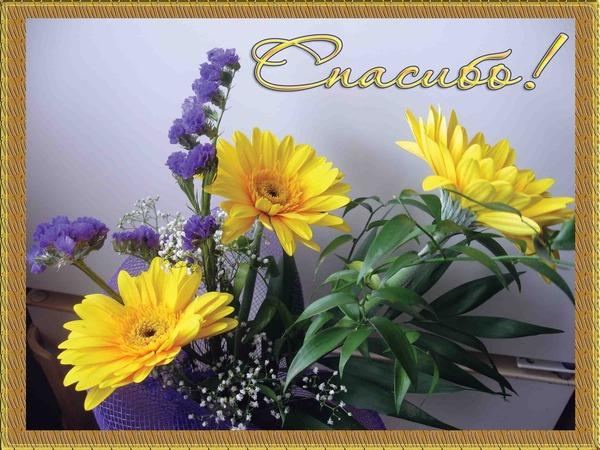 Открытка цветы спасибо