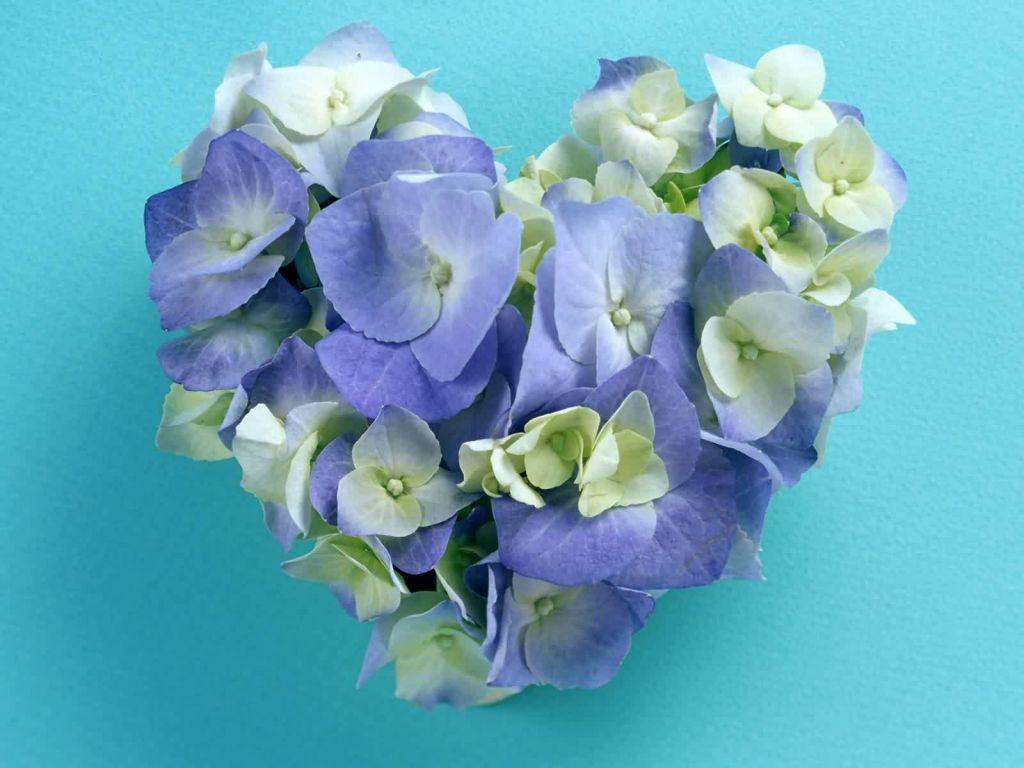 Открытка цветы сердце