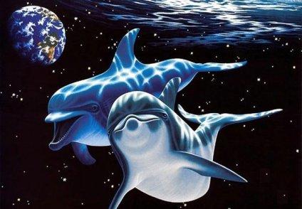 Открытка с днем китов и дельфинов!