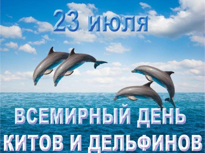 Открытка защита китов и дельфинов